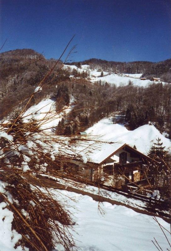 Haus Schnee
